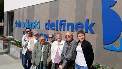 """DDP """"Senior – Wigor"""" / Dolnośląski Delfinek Strzegom"""