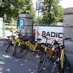 Rowery Miejskie Strzegom