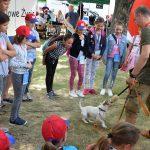 Transgraniczne Miasto Dzieci - STRZEGOM 2019